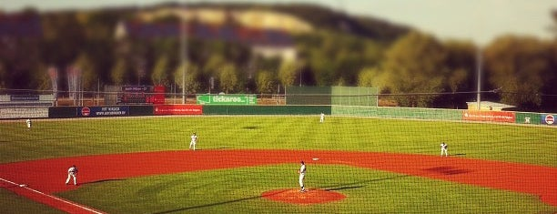 Armin-Wolf-Arena is one of Baseball - 1. Bundesliga Nord und Süd.