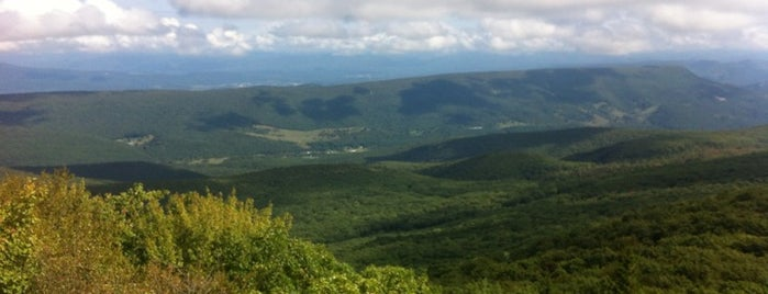 Dolly Sods is one of Wild and Wonderful West Virginia.