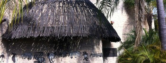 Museo de Caza Albarrán is one of Museos, Galerias y sitios Historicos de Gdl.