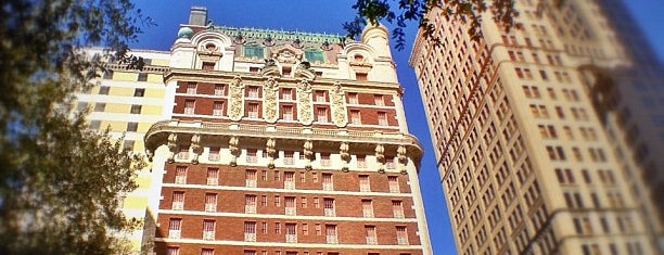 The Adolphus is one of Pet-Friendly DFW.