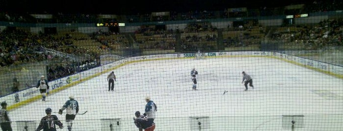 Worcester Sharks is one of WOOCard Venues.