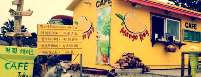 Rich Mango is one of My Favorite Spots (Places I've really been to).