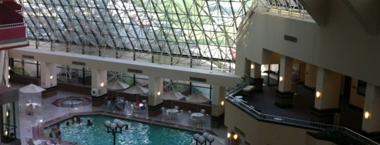 Crowne Plaza St. Louis Airport is one of Hotel / Casino.