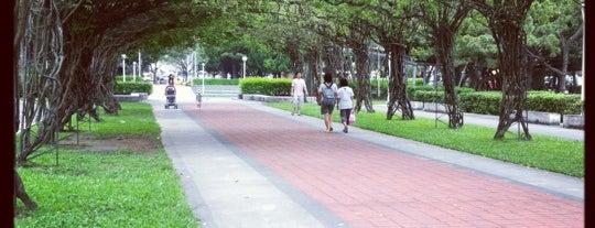 榮星花園公園 is one of Taiwan.