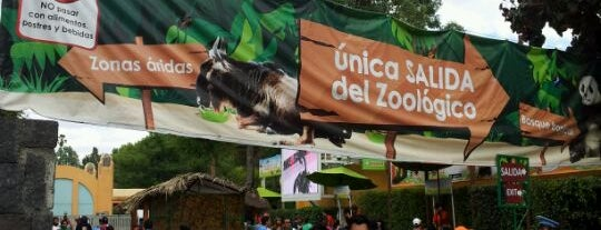 Zoológico de Chapultepec is one of PTS - Around México City.