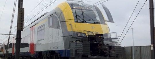 Station Buda is one of Bijna alle treinstations in Vlaanderen.