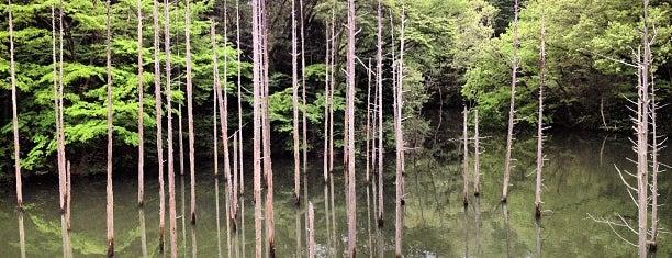 小山内裏公園 is one of さっしーのお気に入り.