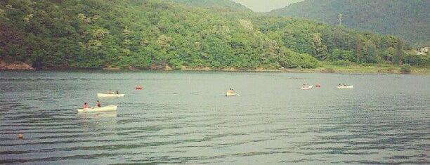 백운호수 is one of swimmies.