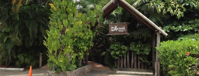 Kariwak Village Restaurant is one of Top places.