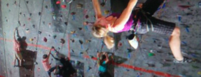 Vertical Ventures is one of Things to do in Tampa Bay.