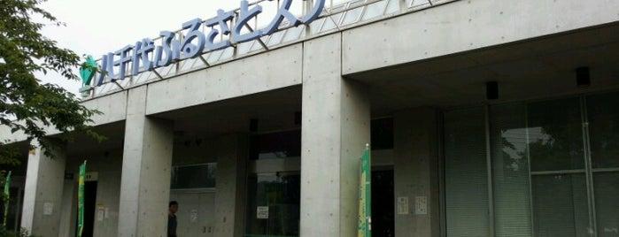 道の駅 やちよ 八千代ふるさとステーション is one of サイクリング.