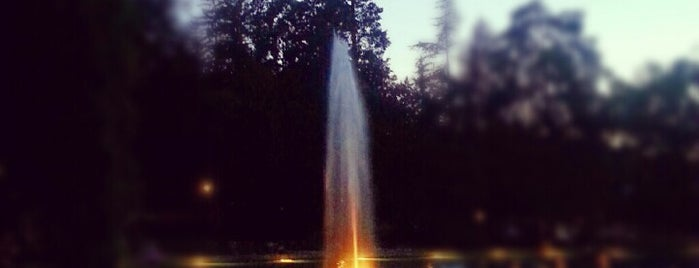 Parco Termale Villa dei Cedri is one of Veneto best places 2nd part.