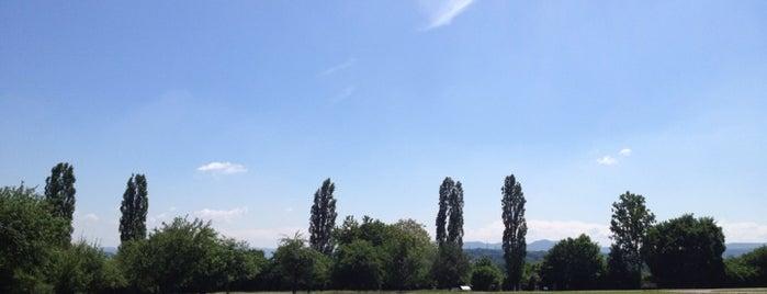 Römerpark is one of Stuggi4sq.
