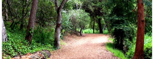 Mission Trail Nature Preserve is one of Dog-Friendly Monterey Peninsula.