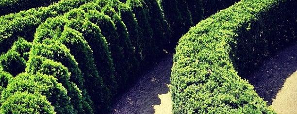 The Morton Arboretum is one of Hipsqueak Awards Nominees.