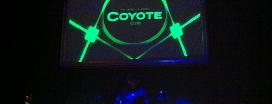 Coyote CDE is one of yeii_roins.