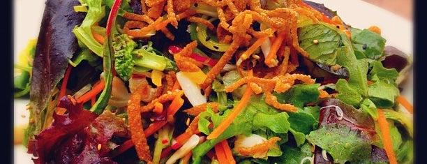 Village Kitchen is one of Best Fine Dining Restaurants in Dallas.