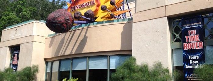Dinosaur is one of Walt Disney World.