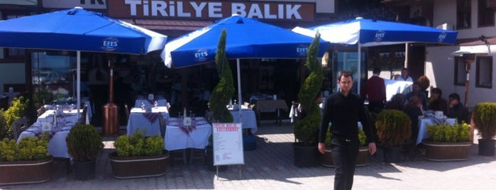 Tirilye Balık Restorant is one of The Next Big Thing.