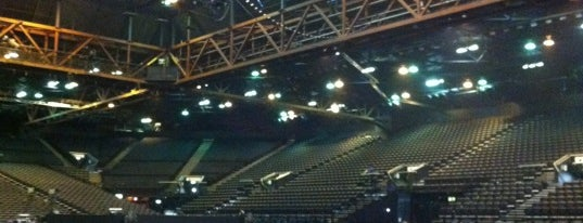 The Genting Arena is one of Must-visit Arts & Entertainment in Birmingham.
