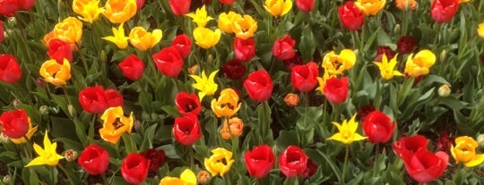 Chicago Botanic Garden is one of Chicago Favorites.