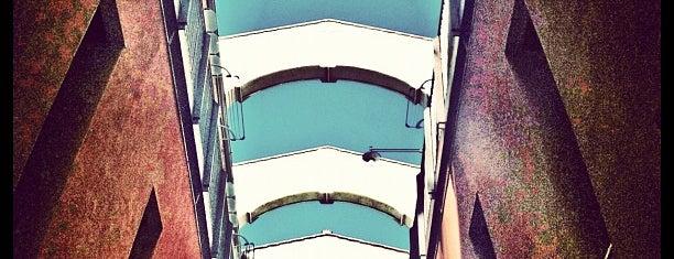 MiSiedo Firenze