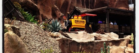 Calico Mine Ride is one of Coaster Credits.