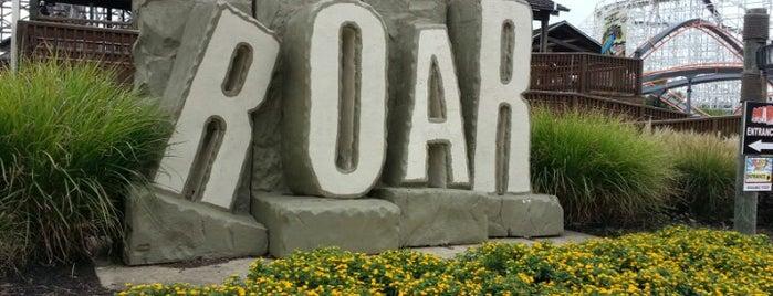 Roar is one of ROLLER COASTERS.