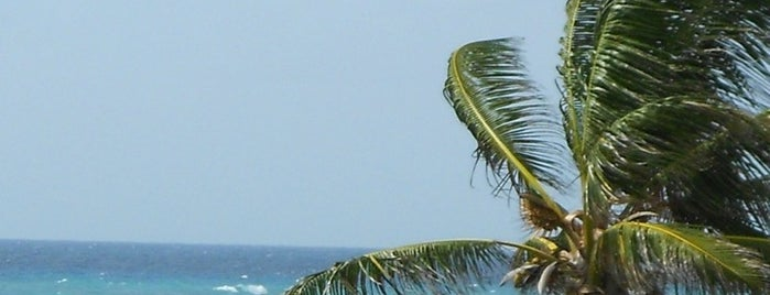 Surfer's Point is one of Must visit places in Christ Church, Barbados.