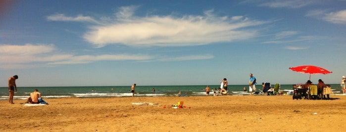 Beluqa çimərliyi / Beluga Beach is one of Absheron Beaches.