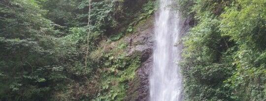 養老の滝 is one of 日本の滝百選.