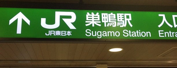 Sugamo Station is one of Tokyo JR Yamanote Line.