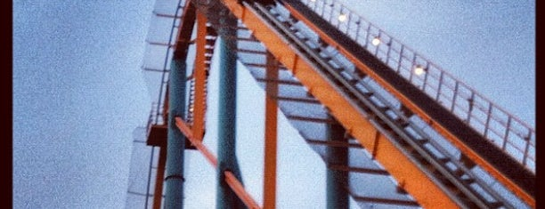 Goliath is one of ROLLER COASTERS.