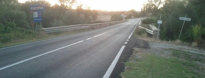 Ponte sul Cesano is one of Tutto Castelleone di Suasa.