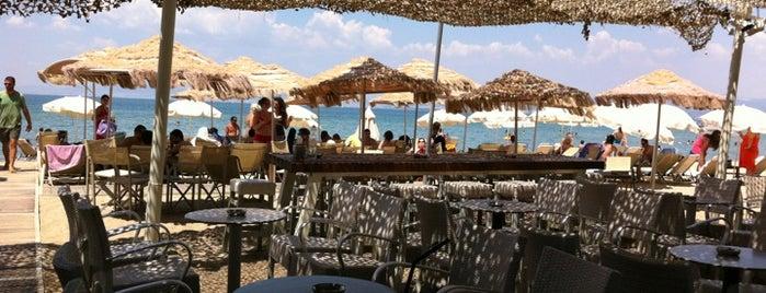 Mamabloom is one of Καφές - Ποτό - Διασκέδαση in Θεσσαλονίκη.