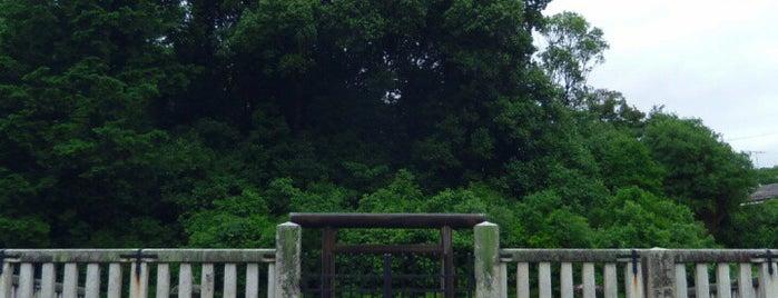 後一條天皇 菩提樹院陵 is one of 天皇陵.