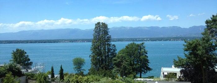 Le Floris is one of Geneva.