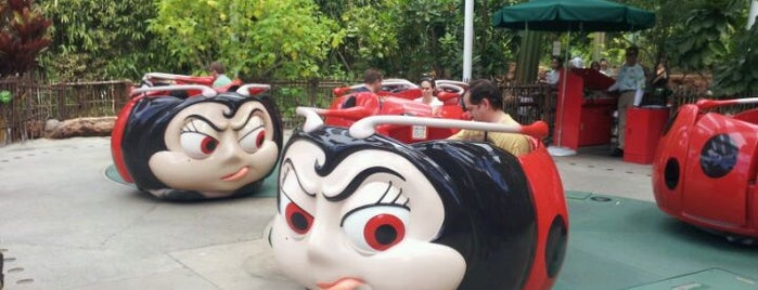 Francis' Ladybug Boogie is one of Rides I Done...Rode.