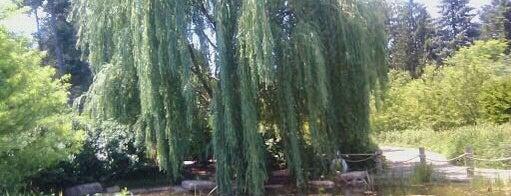 Children's Garden - The Morton Arboretum is one of Hipsqueak Awards Nominees.