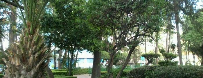 Parque de los Insurgentes is one of ¡Cui Cui ha estado aquí!.