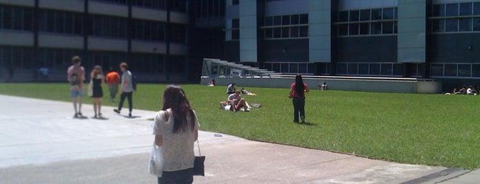 UTS Alumni Lawn is one of Visit UTS.