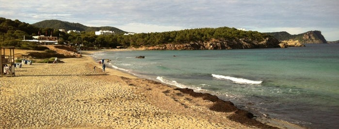 Cala Nova is one of Ibiza.