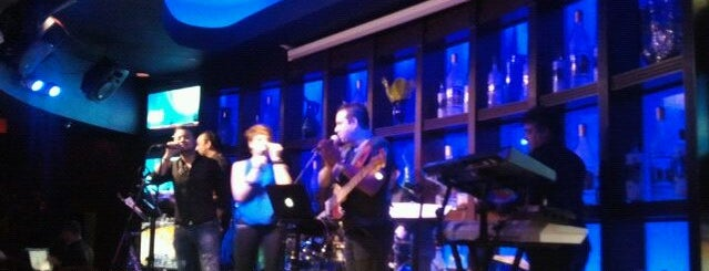 Blue Martini is one of Things to do in Tampa Bay.