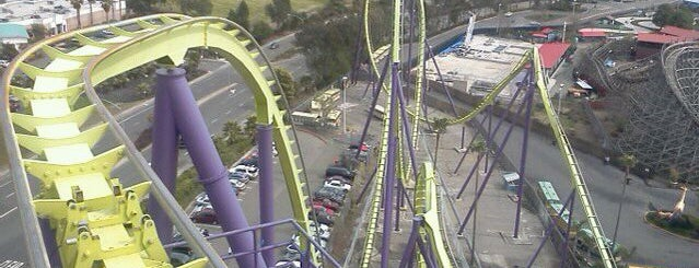 Medusa is one of ROLLER COASTERS.