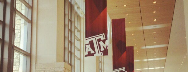 The 12th Man Hall is one of What to see in the new MSC.
