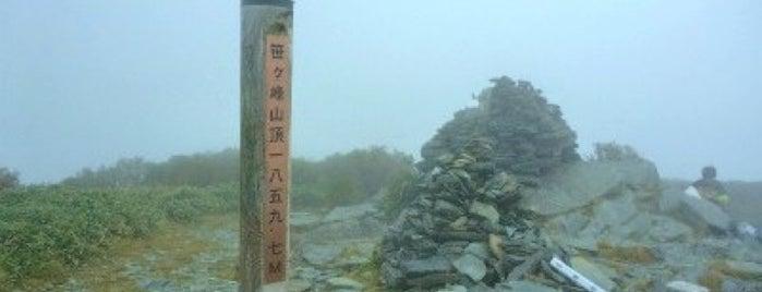 笹ヶ峰 is one of 四国の山.