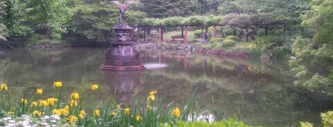 Kumogata Pond is one of 公園.