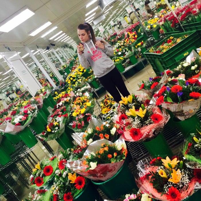 Доставка цветов на дом петрозаводск улица мерецкова купить цветы на можайском шоссе
