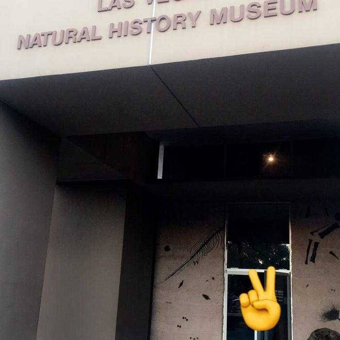 Photo of Las Vegas Natural History Museum