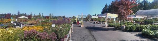Farmington Gardens